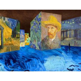 Exposition : Van Gogh, la nuit étoilée, Les Baux De Provence