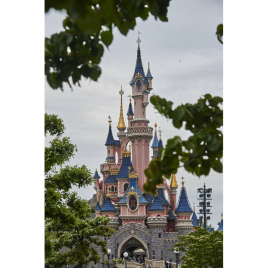 Disneyland, billet 1 jour 1 parc, Marne-la-Vallée