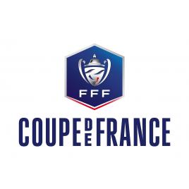 PARIS Saint-Germain - Dijon  (Coupe de France), Paris, le 23/01/2019