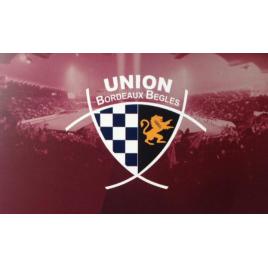 Union Bègles Bordeaux - Toulon, Bordeaux, le 24/11/2018