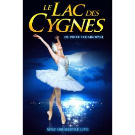 Le lac ds cygnes, Marseille, le 12/01/2020