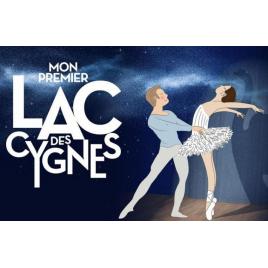 Mon premier lac des cygnes, Lyon, le 20/02/2021