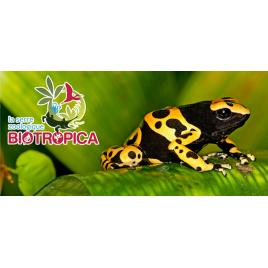 La  Serre Zoologique Biotropica
