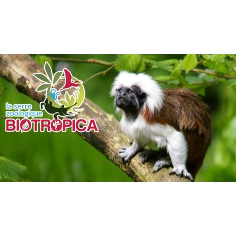 La  Serre Zoologique Biotropica, Val De Reuil