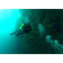 Lagune Plongée