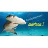 Aquarium de Biarritz, Biarritz