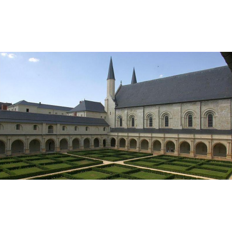 Abbaye De Fontevraud, Fontevraud L'abbaye