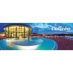 Calicéo - entrée 2h (Bordeaux, Nantes, Toulouse et Lyon)
