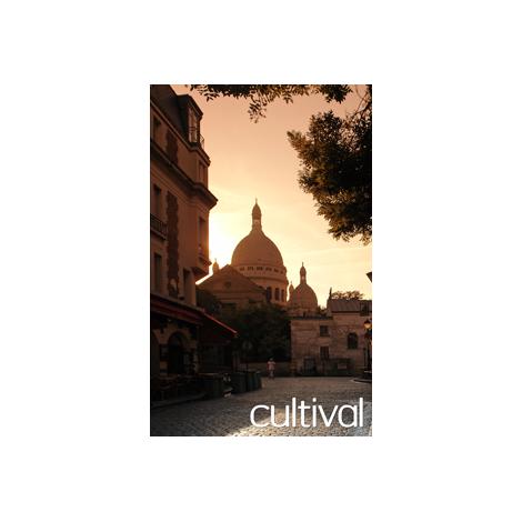 Visite guidée :  balade au coeur de Montmartre, Paris